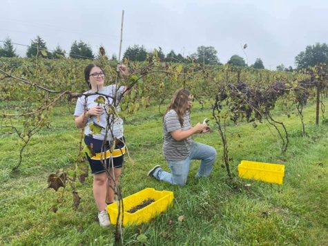 JMHS Students Harvest At Old World Libations